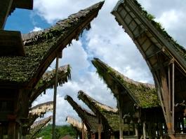 Sulawesi, Rantepao (pays Toraja)