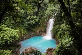 Tenorio (parc national)