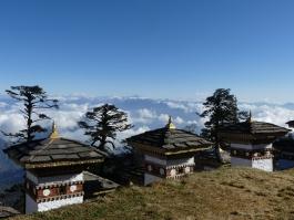 Thimphu (env.), Dochu la (col)