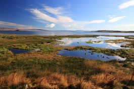 Patagonie, El Calafate