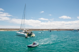 Galapagos, île de Baltra