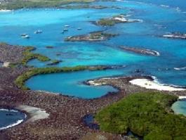 Galapagos, île Isabela