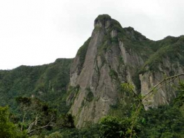 Marojezy (Parc National)