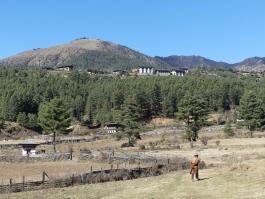 Centre, Phobjikha (vallée)