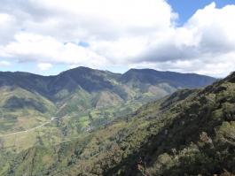 Sierra sud, Podocarpus (parc national)