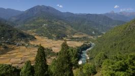 Thimphu (env.), Punakha (vallée)