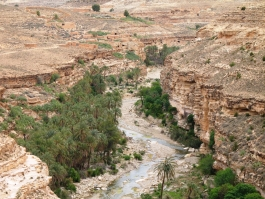 Constantinois, Rhoufi (gorges)