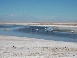 Cordillère de sel (Chili)