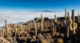 Île d'Incahuasi