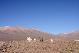 San Pedro de Quemez