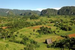 Viñales (vallée)