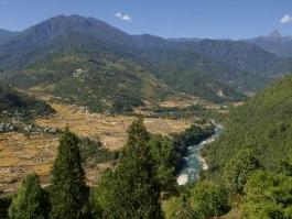 Punakha (vallée)