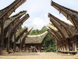 Ile de Sulawesi, Rantepao (pays Toraja)