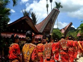 Sulawesi (Ile)