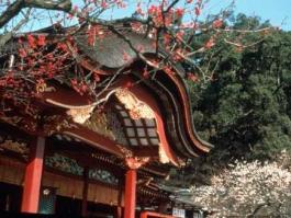 Kyūshū, Daizaifu