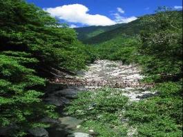 Shikoku, Iya (vallée)