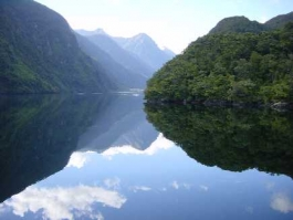 Fiordland (parc national)
