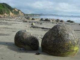 Ile Sud, Moeraki Boulders (rochers)