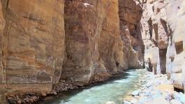 Mer Morte (environ), Wadi Mujib (réserve naturelle)