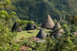 Flores, Wae Rebo (village)