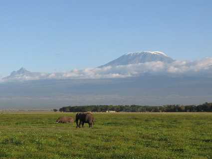 Amboseli (Parc national)