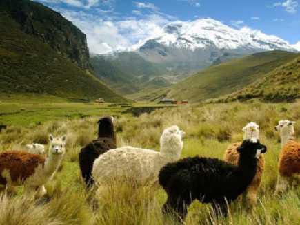 La Sierra (Andes)