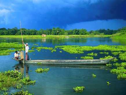 Majuli (île de), Assam