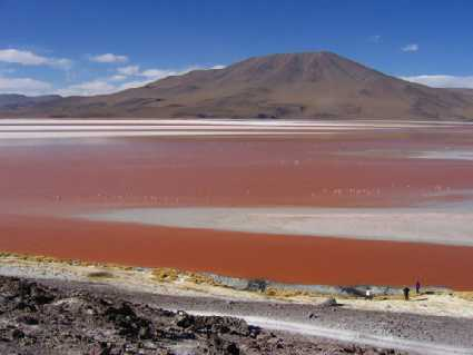 Colorada (Laguna) (Bolivie)