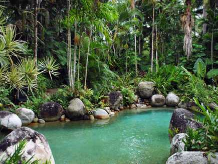 Daintree (Parc National)