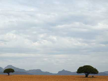 Karoo (Parc National)