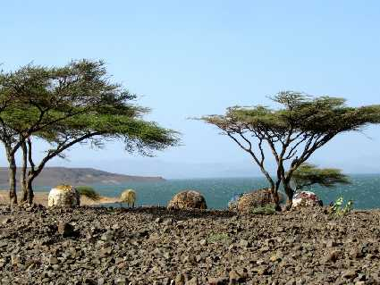 Turkana (lac)