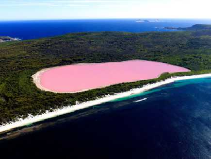 Lac Hillier (Australie Occidentale)