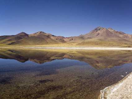 Miscanti et Miniques (lagunas)  (Chili)