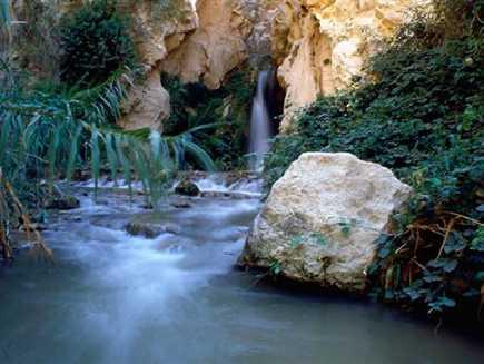 Wadi Mujib (réserve naturelle)