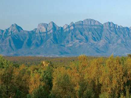 Karongwe (réserve)